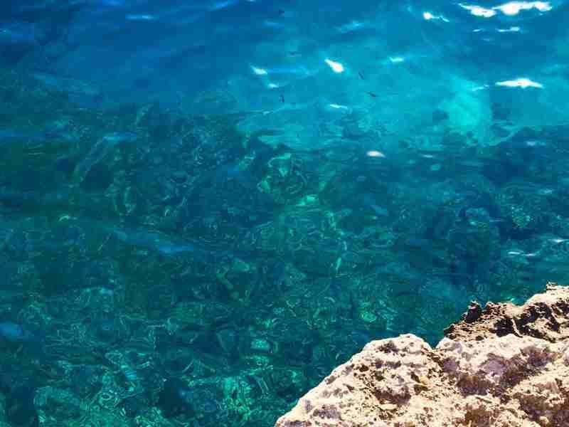 Menorca - summer vacation paz by nature