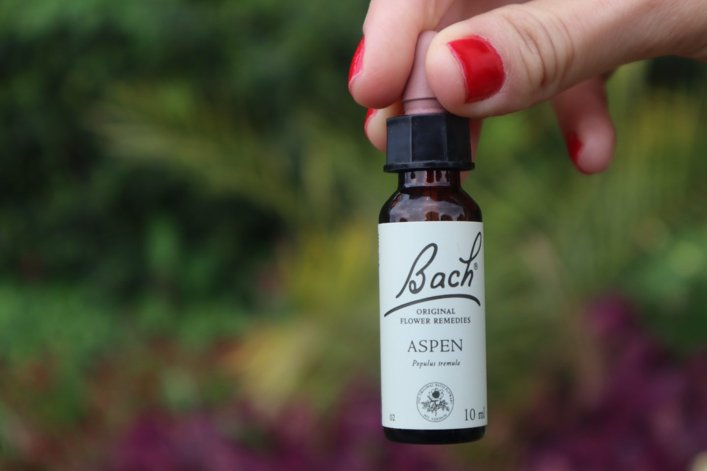 Aspen - Bach Flower Remedies- Helps with Anxiety